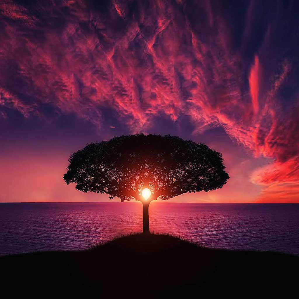The Tree of Life and the Secret of the Silent Bell